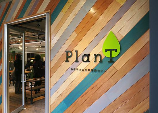 plant_02b